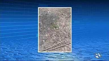 Polícia Civil identifica ligações clandestinas em trecho da Adutora Tabocas - Polícia Civil identifica ligações clandestinas em trecho da Adutora Tabocas