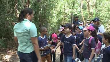 Alunos têm aula em parque botânico em São Luís - Na reta final para o fim do ano letivo grupo de estudantes teve um dia de aula com cara de férias.