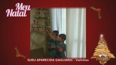 Meu Natal: confira as decorações de telespctadores do Jornal da EPTV - Confira as imagens desta sexta-feira.