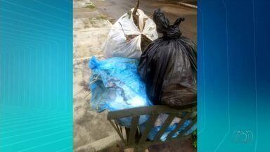 Lixo acumula em quadras de Palmas após servidores pararem por atraso nos salários - Lixo acumula em quadras de Palmas após servidores pararem por atraso nos salários