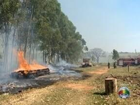 Número de incêndios de grande proporção cresce mais de 30% no Oeste Paulista - Dado é referente ao ano de 2017.