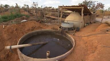 Produtor rural cria equipamento que transforma estrume de animais em gás de cozinha - Invento está chamando a atenção no município de Andaraí, na região da Chapada Diamantina.