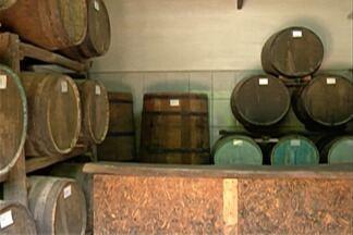Mercado de bebidas artesanais cresce em Guararema - Comerciantes locais aumentaram as vendas em até 300% com cidade decorada para o Natal.