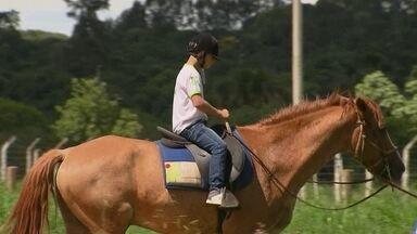 Terapia com cavalos ajuda a mudar a vida de crianças no DF - Uma terapia que ajuda a mudar a vida de crianças e adolescentes especiais. É a equoterapia, a terapia com o uso de cavalos, que é oferecida de graça.