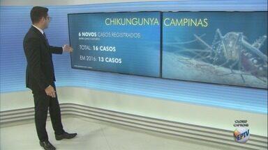Prefeitura de Campinas confirma seis casos de chikungunya na cidade - Quatro deles foram transmitidos em bairros urbanos da cidade.