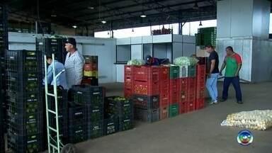 Ceagesp de Marília atende em horário diferenciado para atender consumidores no Ano Novo - A Ceagesp deve abrir em horário diferenciado já para atender aos consumidores de Marília e região para o Réveillon.