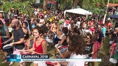 Blocos de carnaval já deram largada na festa de Momo em Belo Horizonte - Vários blocos saíram às ruas da capital mineira neste sábado para ensaiar para os desfiles.
