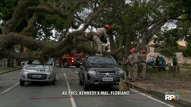 Árvore cai e atinge três carros - Foi na avenida Marechal Floriano Peixoto com a Kennedy.