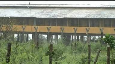 Dez presos fogem do presídio de Luziânia durante banho de sol - Na hora, cinco agentes vigiavam 466 detentos.