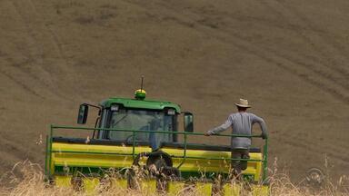 Saiba o tempo de validade das máquinas agrícolas - O cuidado com o maquinário é importante para que os agricultores não tenham prejuízos.