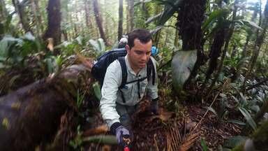 Aventura e desafios nas trilhas do Terra da Gente rumo ao Monte Caburaí - Aventura e desafios nas trilhas do Terra da Gente rumo ao Monte Caburaí