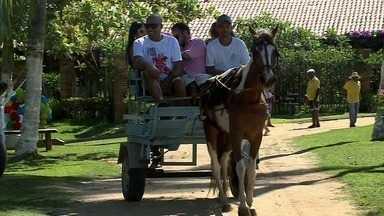 Conheça uma fazenda na cidade de Paripueira que é atração turística - No local é poss[ivel entrar em contato com o campo.