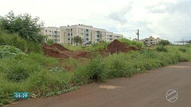 Terrenos estão repletos de mato e sujeira em MS - Algumas vezes, moradores limpam por conta própria terrenos. Eles perguntam: e a punição para quem deixa terreno ficar em tais condições?