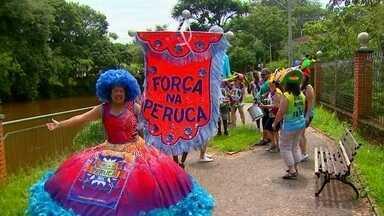Cidade do interior de São Paulo mistura carnaval com esportes radicais - Em Brotas, os visitantes podem curtir as trilhas, cachoeiras e os esportes radicais que a cidade oferece. Mas no período do Carnaval, outra atração é o bloco Força na Peruca, que já existe há 20 anos.