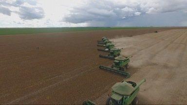 CONAB divulga levantamento da safra de grãos - CONAB divulga levantamento da safra de grãos.
