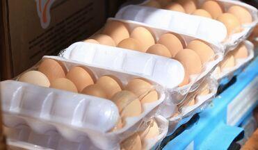 Empresário cria site para vender ovos - Que tal ter a comodidade de comprar ovos pela Internet e receber tudo em casa? Um empresário investiu na ideia e tem comemorado as boas vendas.
