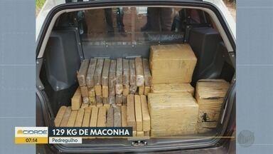 Polícia Civil apreende 129 quilos de maconha em Pedregulho, SP - Droga estava enterrada em matagal e sacos de lixo indicavam o local.