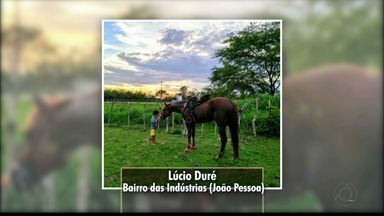 Veja as fotos das paisagens paraibanas enviadas pelos telespectadores do Bom Dia Paraíba - Confira as fotos exibidas nesta quinta-feira.
