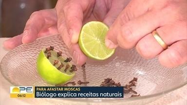 Biólogo ensina como afastar moscas com receitas naturais - Lixo e esgoto estourado costumam atrair moscas