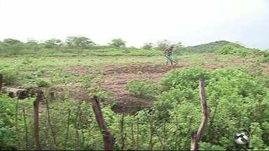 Agricultores se animam com chuva na zona rural de Caruaru - Plantações já começaram a ser realizadas