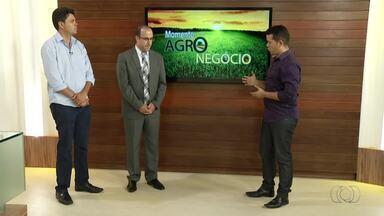 Defensor e coordenador da Pastoral da Terra falam sobre conflitos agrários no Tocantins - Defensor e coordenador da Pastoral da Terra falam sobre conflitos agrários no Tocantins