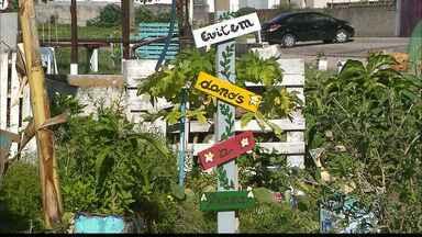 Moradores do Jardim Oceania se unem para cuidar de uma praça e cultivar alimentos - Projeto será votado hoje no Orçamento Democrático.