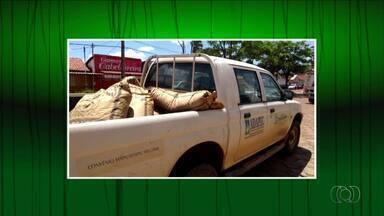 Cerca de 200 kg de sementes irregulares são apreendidos em Almas - Cerca de 200 kg de sementes irregulares são apreendidos em Almas