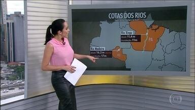 Chuvas de verão já deixam os rios da região norte na cota de transbordamento - A combinação do calor com a umidade deve provocar pancadas de chuva em todo o país. Em São Paulo mais chuva persistente à tarde e no Rio de Janeiro à noite.