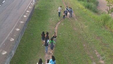 Estudantes do Parque Oziel em Campinas estão sem ônibus escolar - As crianças precisam ir a pé para a escola. Situação coloca em risco a segurança dos alunos.