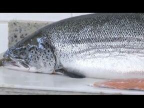Escolher bem a qualidade do peixe faz toda diferença no preparo do prato - Período da quaresma faz o consumo do peixe aumentar no dia a dia do Brasileiro.