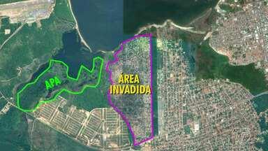 Ocupação na APA Juá causa danos ambientais; estudos de reintegração estão em fase final - Equipe da PM chegará a Santarém esta semana para finalização dos estudo, segundo o comando geral da Polícia Militar do Pará.