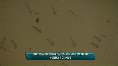 Quatro cidades do oeste estão em alerta por causa da dengue - O índice de infestação do mosquito transmissor da doença é alto.