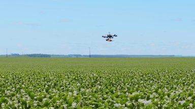 Tecnologia digital traz progresso no campo - Drones e aplicativos estão melhorando a produção agrícola e ajudando a preservar o meio-ambiente.
