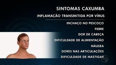 Surto de caxumba é registrado em Aracaju - Maioria dos casos é de alunos e funcionários da mesma unidade de ensino.