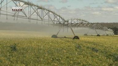Parte 2: Produtores investem em tecnologia para reduzir o consumo de água - Segundo a OMS, quase 70% dá água disponível no mundo é utilizada na agricultura.