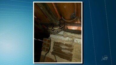 Família encontra cobra no telhado de casa na Maraponga - Outras informações no G1.com.br/ce