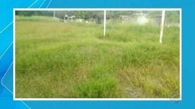 Homem reclama de mato alto em campo de futebol em Corumbá - A prefeitura da cidade informou que a responsabilidade de cuidar dos campos de futebol é da Fundação de Esportes.