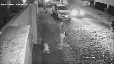 Sem noção: mulher deixa cachorro evacuar na rua, em Vitória - Quem não recolhe as fezes dos animais pode pagar multa de R$ 35.