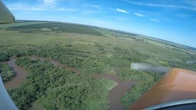 Pantaninho Paulista tem área alagada cheia de belezas naturais - O Pantaninho é a maior riqueza natural do município de Ibitinga (SP), no Centro-Oeste de São Paulo. Ele tem semelhanças com o famoso Pantanal, que cobre boa parte dos estados de Mato Grosso e Mato Grosso do Sul.