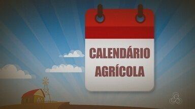 Veja os eventos do calendário agrícola - Nesta quarta, tem curso de pintura em tecido, em Cabixi.