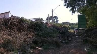 Ecoponto de Bauru é fechado após descartar material às margens de lago - O Ecoponto de Bauru foi flagrado descartando materiais na margem de um lago. Porisso, foi fechado após uma denúncia feita para a Polícia Ambiental.