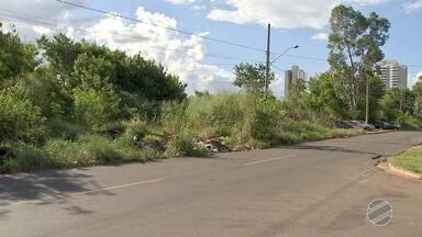 Matagal tira tranquilidade de moradores do Jardim América, em Campo Grande - Além do lixo, matagal também abriga muitos bandidos.