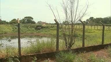 Morador denuncia despejo de esgoto em lagoa de contenção de água pluvial em Ribeirão Preto - Cetesb investiga o caso e solicitou ao Daerp que verifique emissários próximos ao local.