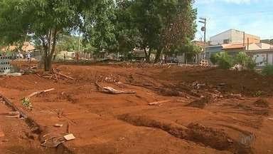 Barracos erguidos em terreno público são destruídos em Ribeirão Preto - Área no Jardim Marchesi será transformada em praça.
