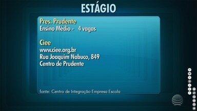 Confira as vagas de estágio desta semana no Oeste Paulista - Oportunidades são oferecidas pelo Ciee.