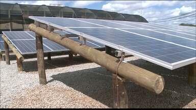 UFCG inaugura usina de energia solar no Sertão e estima economia de R$ 18 mil - Esta é a primeira usina do gênero instalada em uma instituição pública de ensino na Paraíba, segundo direção CCTA do campus da UFCG em Pombal.