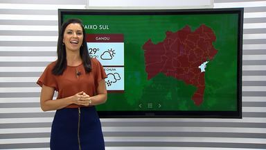 Previsão do tempo: cacaicultores estão satisfeitos com a safra temporã de cacau em Gandu - Confira também como ficarão as temperaturas para capital baiana e o interior do estado.