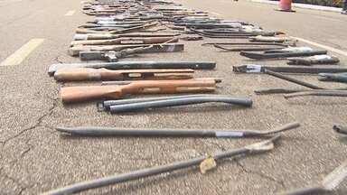 Mais de 400 armas apreendidadas são destruídas em Porto Velho - Maríndia Moura.
