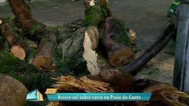 Árvore cai em cima de carros na Praia do Canto, em Vitória - Motorista contou que estava parado no semáforo, quando o galho da árvore caiu. Ninguém ficou ferido.