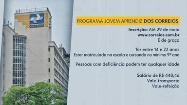 Programa Jovem Aprendiz tem oportunidades nos Correios - Inscrições vão até o dia 29 de maio, pela internet.
